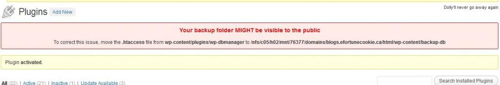 WP DB Manager - Warning